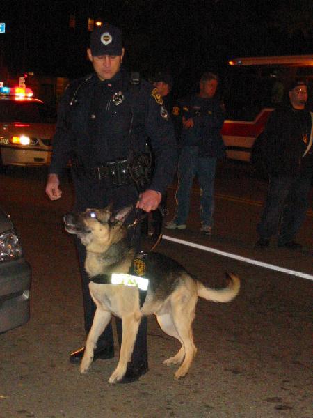 police dog...