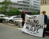 Voices For Animals of Western PA Speaks Out Against Pittsburgh's Killing of Wildlife